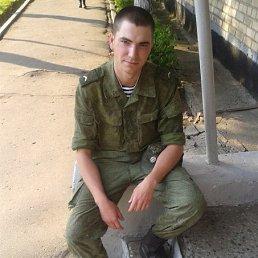Димас, 26 лет, Видяево