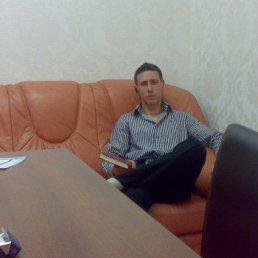 Alexandro, 29 лет, Багратионовск