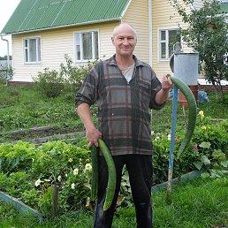 Алексей, 52 года, Шаховская