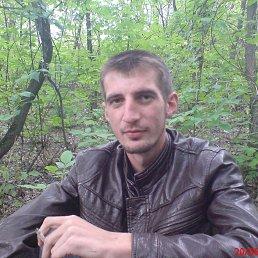 Вадим, 24 года, Старобельск