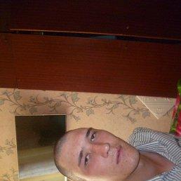 Алексей, 26 лет, Междуреченск