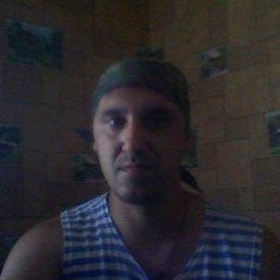 Михаил, 43 года, Гжель