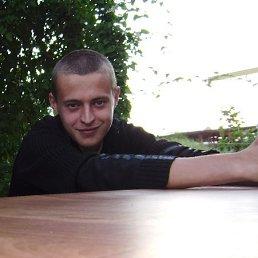 Артем, 27 лет, Теплодар