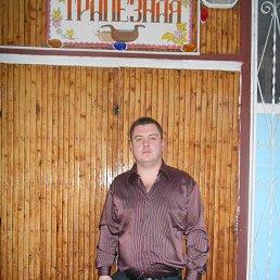 Александр, 36 лет, Клин