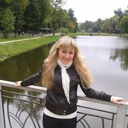 Алина, 28 лет, Киев