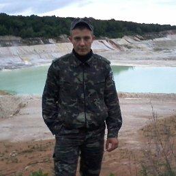 Денис, 29 лет, Бердичев