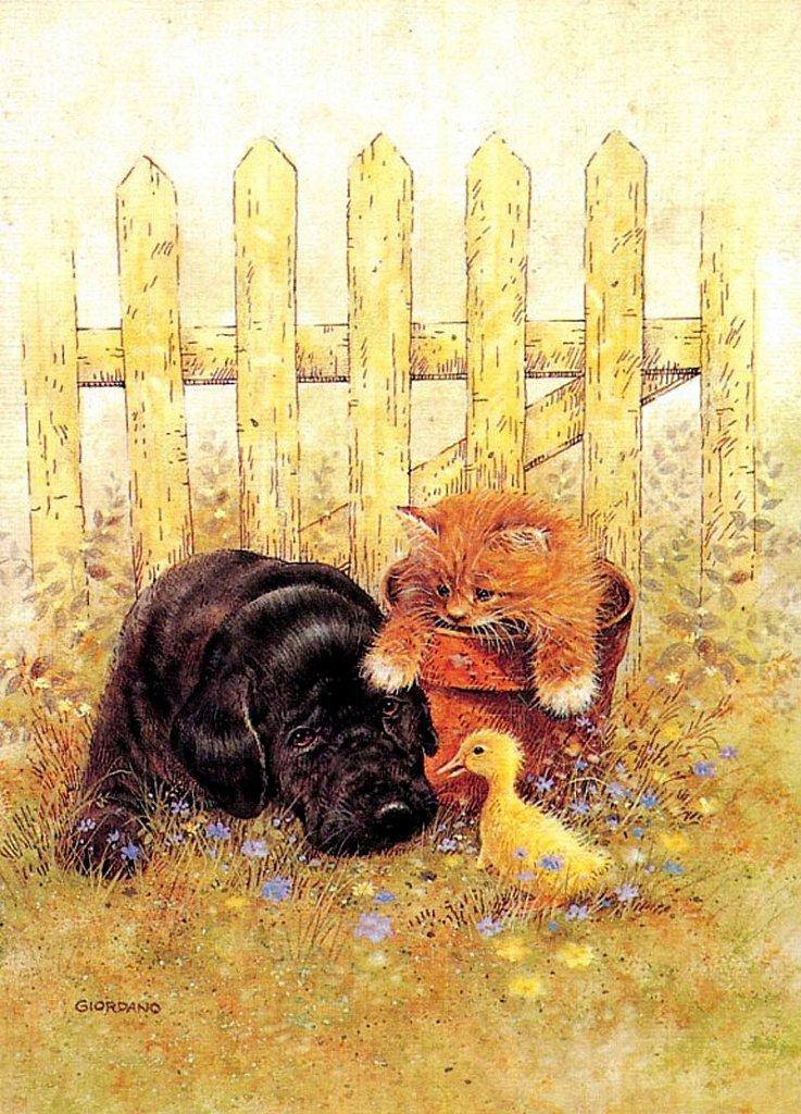 Кот и собака открытка, значениями