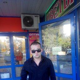 Дмитрий, 28 лет, Сертолово