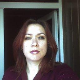 Светлана, 44 года, Коростень