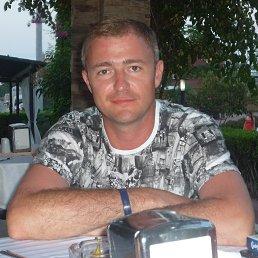 Александр, Волгоград, 44 года