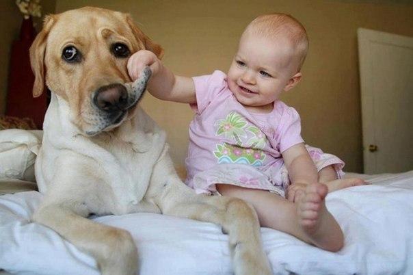 10 доказательств, что детям нужны домашние животные - 7