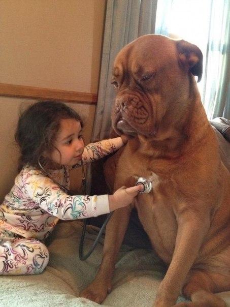 10 доказательств, что детям нужны домашние животные - 9