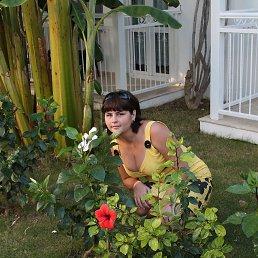 елизавета, 32 года, Вышгород