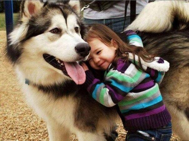 10 доказательств, что детям нужны домашние животные - 5