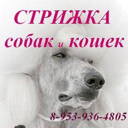 Фото Алексей, Архангельск, 46 лет - добавлено 15 ноября 2014