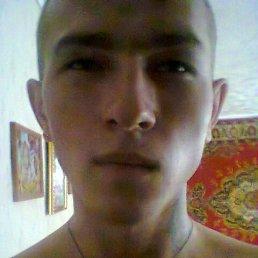 Денис, 24 года, Еманжелинск