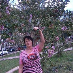 Галина, 61 год, Курск