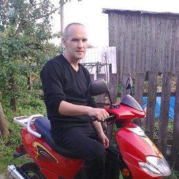 владимир, 45 лет, Иваново