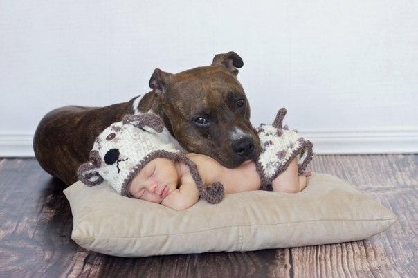 10 доказательств, что детям нужны домашние животные - 3