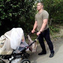 Коля, 29 лет, Переяслав-Хмельницкий