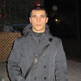 Миша, 27 лет, Николаевск