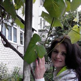 Люда, 41 год, Дубровица