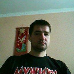 Антон, 37 лет, Одинцово-10