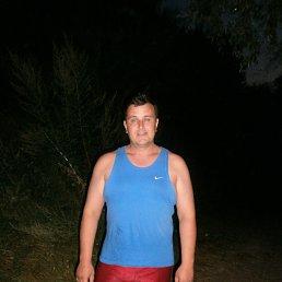 Дмитрий, 49 лет, Новая Водолага