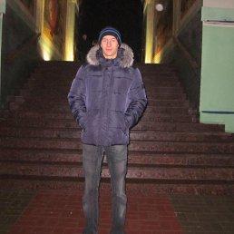 Тимур, 24 года, Курск