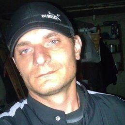 Андрей, Красногоровка, 40 лет