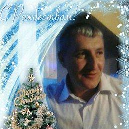 Володя, 41 год, Виноградов