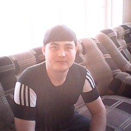 Арсен, 29 лет, Курск