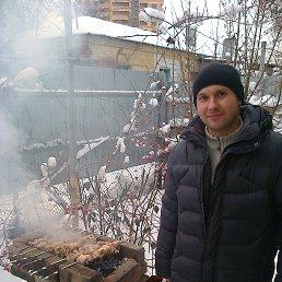 Roman, 41 год, Ростов-на-Дону