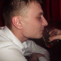 андрей, 29 лет, Гвардейск