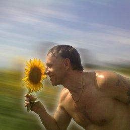 Александр, 54 года, Желтые Воды