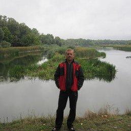 Александр, 49 лет, Павловск
