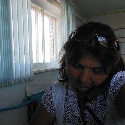 Елена, 55 лет, Оленегорск-2
