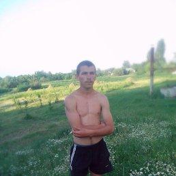 Толя, 25 лет, Кривое Озеро