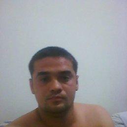 Александр, 33 года, Николаев