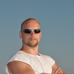 Анатолик, 41 год, Харьков - фото 1