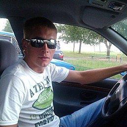 Максим, 30 лет, РОГАЧЁВ