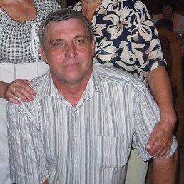 Сергей, Котово, 65 лет