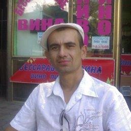 дмитрий, 37 лет, Арбузинка