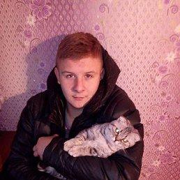 Sergey, 24 года, Сокольники