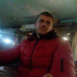 Денис, 29 лет, Коростень