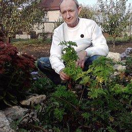 Николай, 56 лет, Задонск