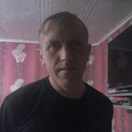 михаил, 43 года, Красная Горбатка