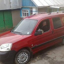 Володимир, 52 года, Шаргород