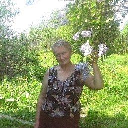 Людмила, 64 года, Ярославль