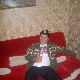 Денис, 27 лет, Болхов